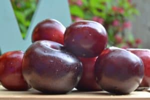 Plum fruit roll ups