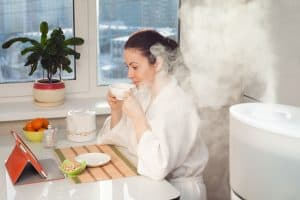 Tips for the best winter skin care humidifier