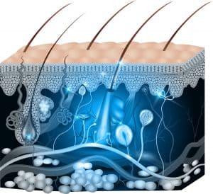 Skin care routine for combination skin